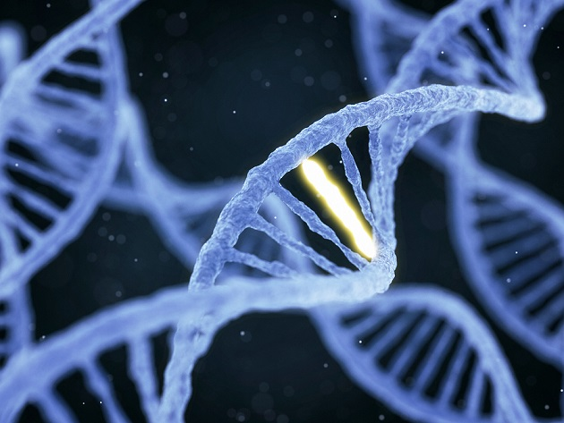 que es cancer genetico
